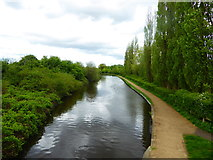 TQ1281 : The Paddington Arm of the Grand Union Canal at Southall by Marathon
