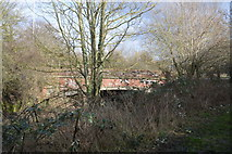 TQ2065 : Tolworth Court Bridge through trees by N Chadwick