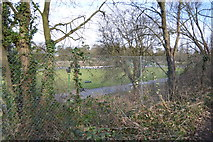 TQ2065 : Surbiton Raceway (through a fence) by N Chadwick