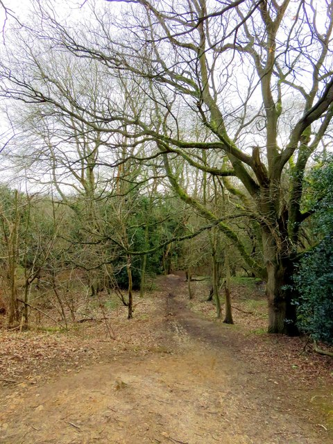 A path on Horspath Common