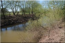 SO8452 : The River Teme at its confluence with the Severn by Philip Halling