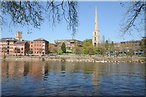 SO8454 : Worcester viewed from across the River Severn by Philip Halling