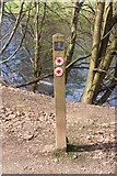 NS3421 : River Ayr Walk Trail Sign by Billy McCrorie