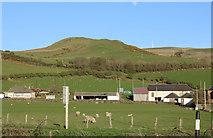 NX1896 : Farmland at Shallochpark by Billy McCrorie