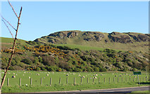 NX1896 : Farmland below the Byne Hill by Billy McCrorie