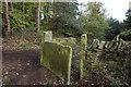 SE1319 : Kirklees Way towards Fixby Park by Ian S