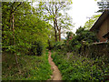 TQ2749 : Path south down edge of Redhill Common by Robin Webster