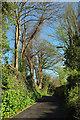 SX9166 : Combe Lane, Torquay by Derek Harper
