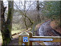 SO0061 : Track, Wye Valley Walk by Andrew Hill
