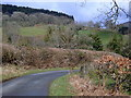 SO0060 : Lane corner on the way to the river Wye by Andrew Hill
