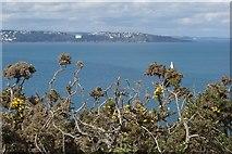 SX9456 : Torbay Seen From Berry Head by Peter Jeffery