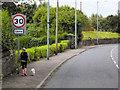 D4003 : Larne, Glenarm Road by David Dixon