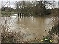 SP2965 : The River Avon has broken its banks, southeast Warwick by Robin Stott