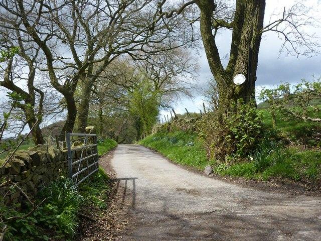 The lane to Pyegreave Farm