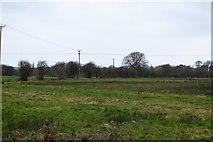 TR2158 : Rough grassland by N Chadwick