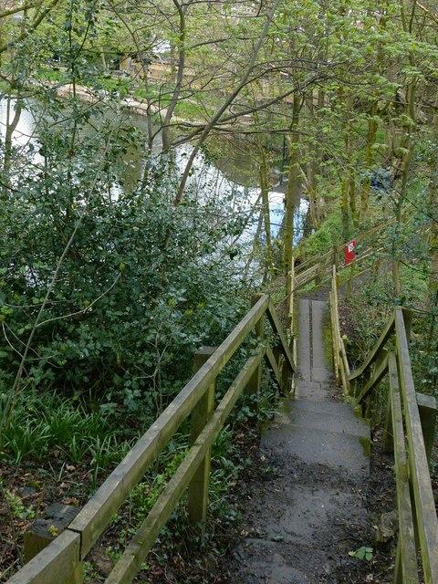 Footpath steps