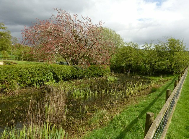 Medieval moat at Ridge Hall Farm