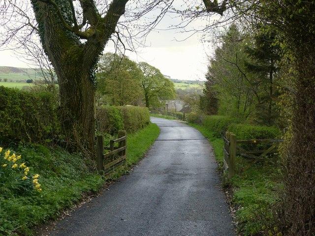 The lane to Ridge Hall Farm