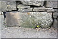 SE1289 : Old guide stone at base of wall on north side of the A684 by Roger Templeman