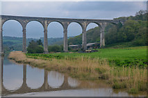 SX4368 : Calstock : The River Tamar by Lewis Clarke