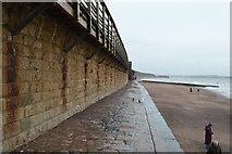 SX9676 : South West Coast Path by Dawlish Station by N Chadwick