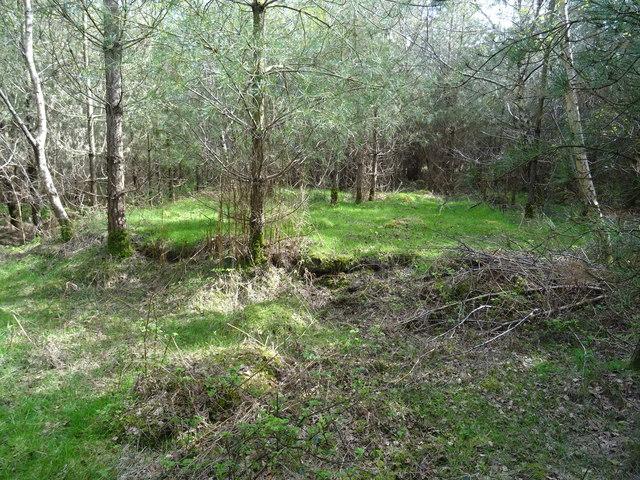 Rugeley Camp - Hut base