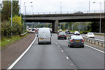 J3479 : M5/M2 Flyover, North Belfast by David Dixon