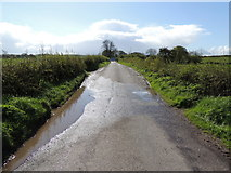 H5366 : Wet along Clogherny Road by Kenneth  Allen