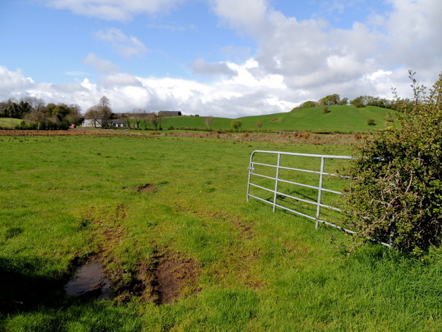 Muddy entrance to field, Beragh