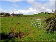 H5366 : Muddy entrance to field, Beragh by Kenneth  Allen