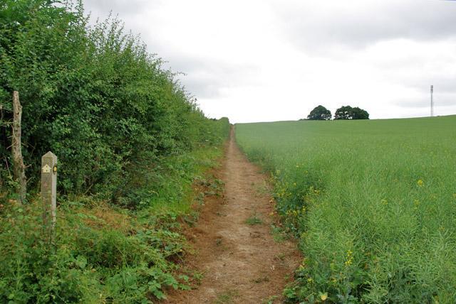 Footpath gently uphill