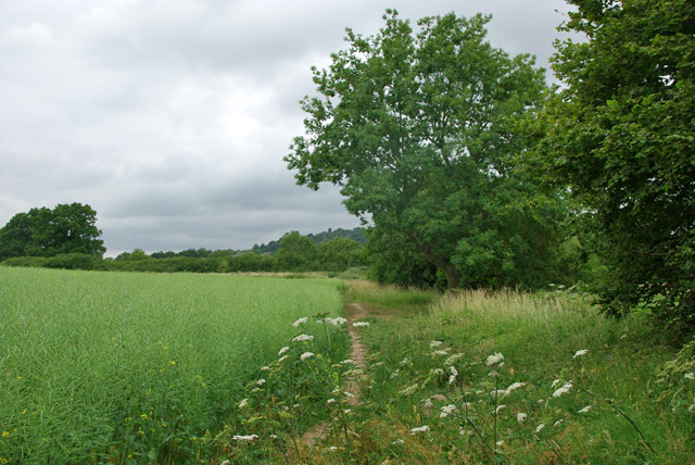 Unofficial path from Greensand Way to Canada Road
