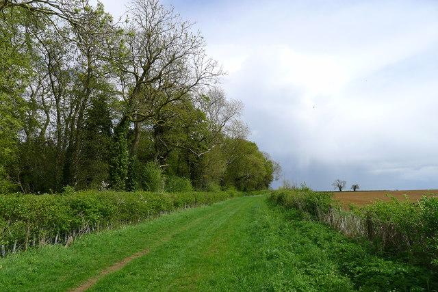 Bridleway past Wymark Spinney