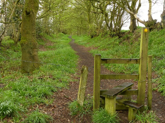 Footpath towards Danes Moss Farm
