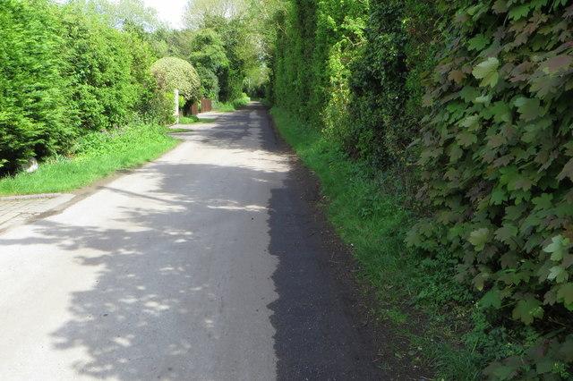 Bridleway towards Totternhoe