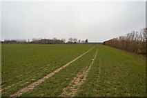 TR2257 : Field and boundary by N Chadwick