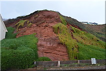 SX9677 : Red cliff by N Chadwick