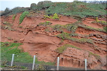 SX9777 : Red sandstone cliff by railway line by N Chadwick