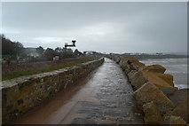 SX9778 : South West Coast Path by N Chadwick