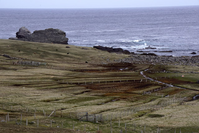 Mire at Freyers, Foula