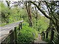 NZ1014 : Road and path to Whorlton Bridge by Jonathan Thacker