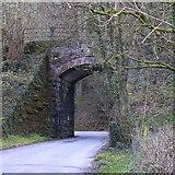 SN6672 : Railway bridge at Trawsgoed by Rudi Winter