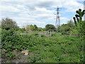 TQ3686 : Waterworks Nature Reserve by PAUL FARMER