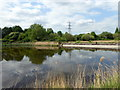 TQ3686 : Former Filter Bed at Waterworks Nature Reserve by PAUL FARMER