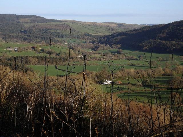 Ystwyth valley upstream of Trawsgoed