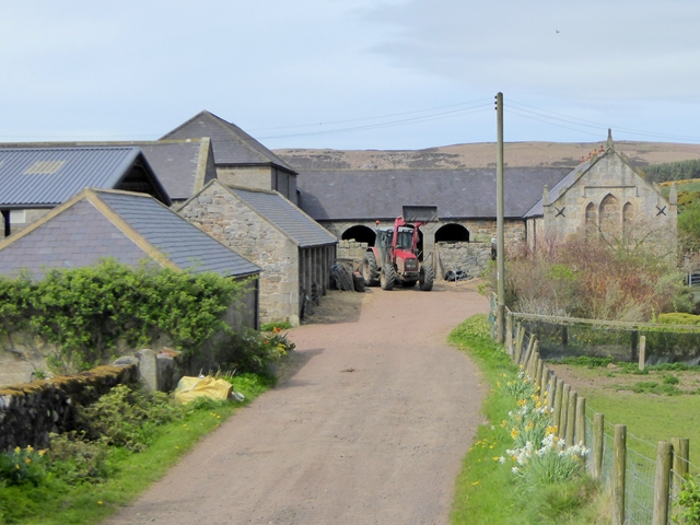 Farmyard at Cockhall Farm
