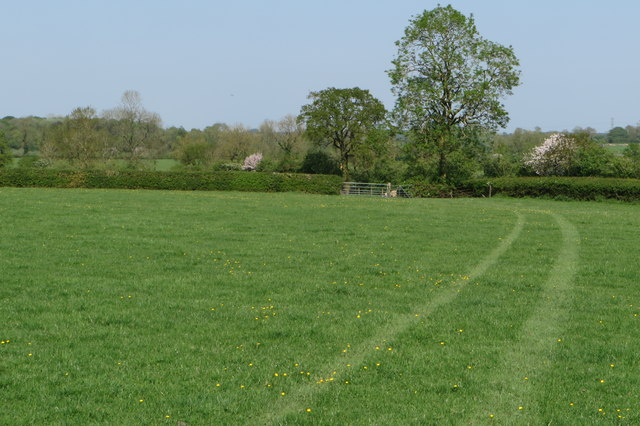 Pasture by the path to Akeley