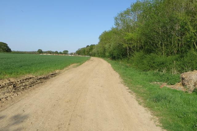 Westbury circular ride by Three Parks Wood