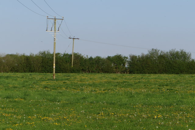 Powerlines over the meadow