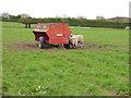 SE3042 : Sheep feeder near Owlet Hall by Stephen Craven